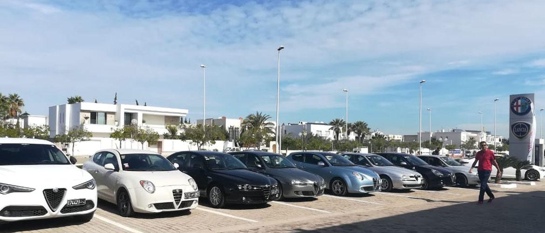 Rassemblement des passionnés d'Alfa Romeo en Tunisie chez ITALCAR